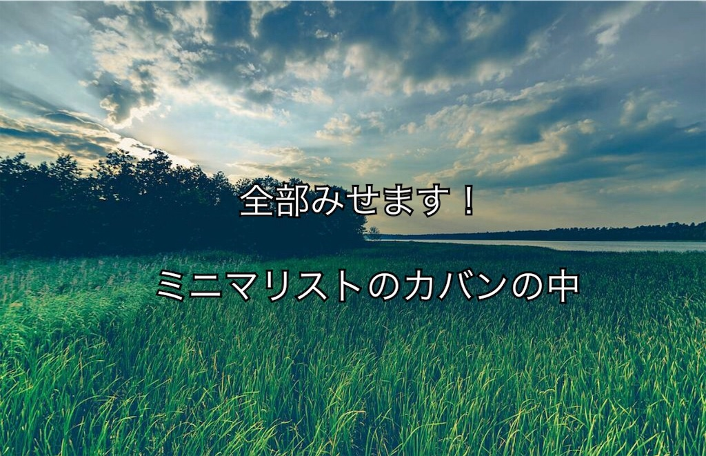 f:id:yonechix:20190321220957j:image