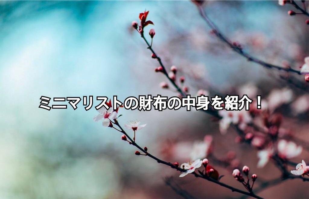 f:id:yonechix:20190326205747j:image