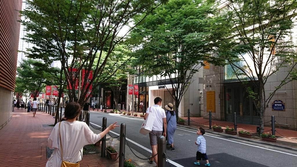 f:id:yoneda-tomomi0811:20180610025102j:plain