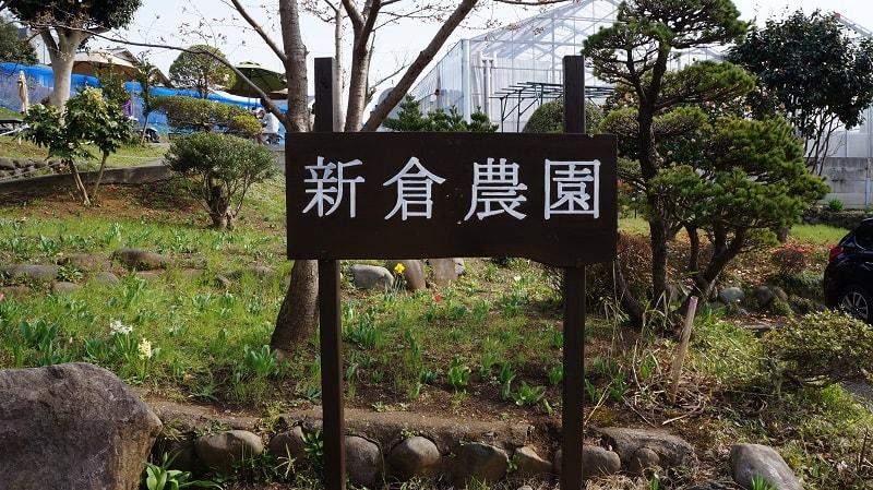 f:id:yonekichism:20170405220610j:plain