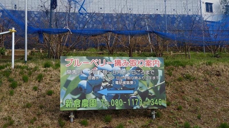 f:id:yonekichism:20170405221254j:plain