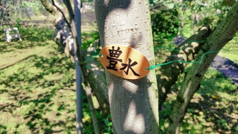 f:id:yonekichism:20170910063111j:plain