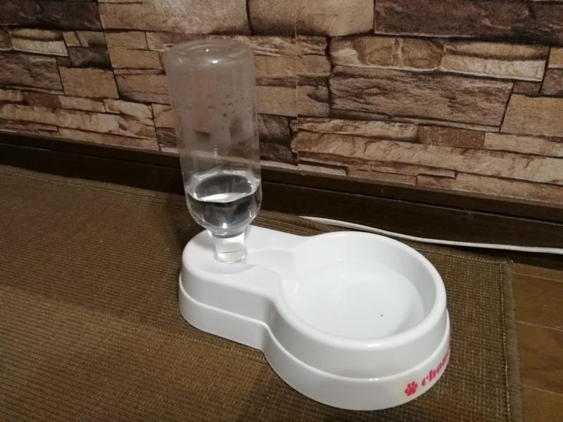 100均(セリア)の犬用給水器