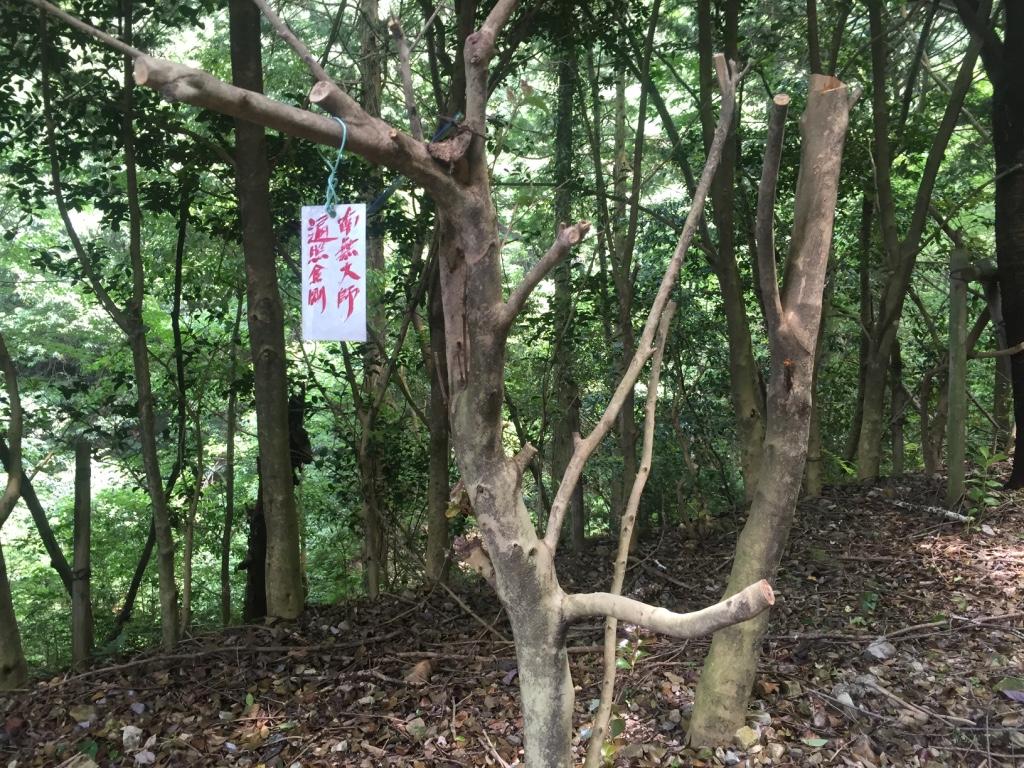 f:id:yonesuke7:20160528140722j:plain