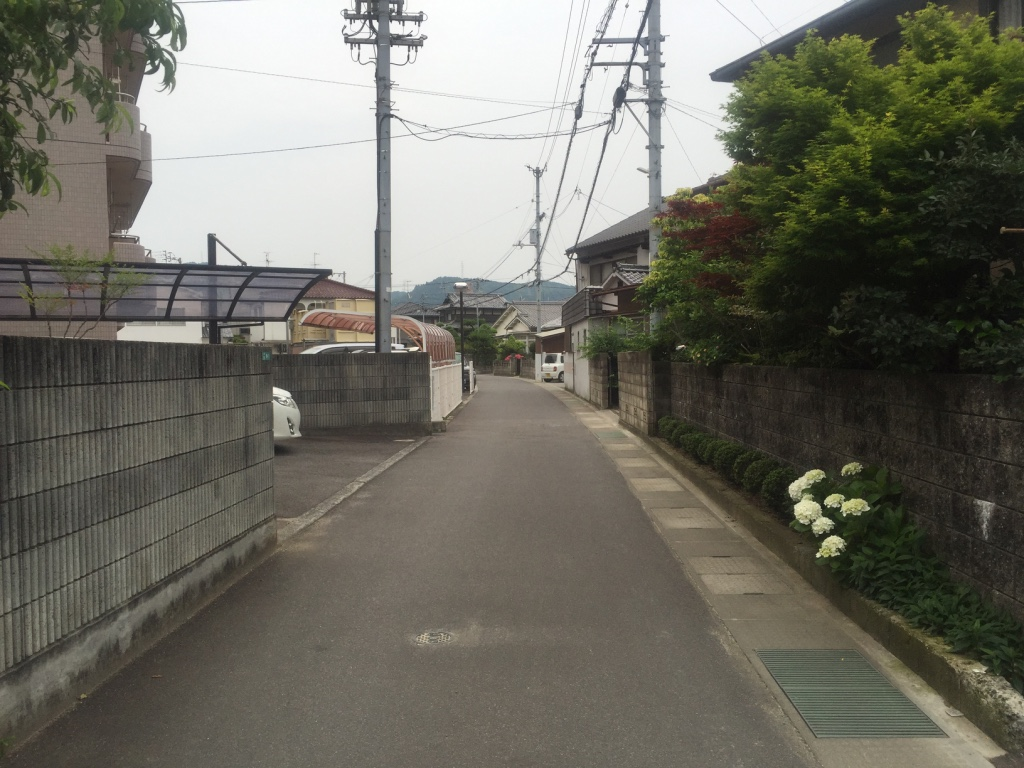 f:id:yonesuke7:20160602192028j:plain