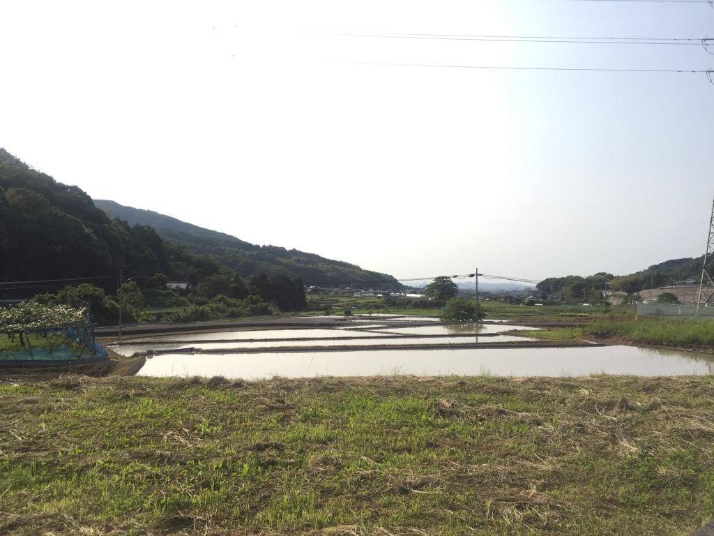 f:id:yonesuke7:20160602192355j:plain