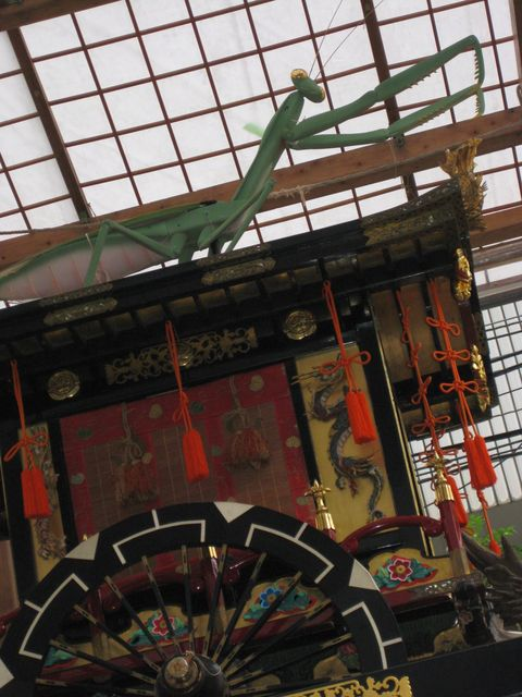 f:id:yoneyumi0919:20080715165642j:image:w360