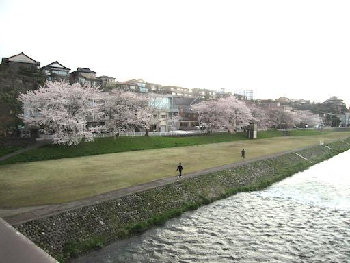 f:id:yonhonda:20200402204918j:plain
