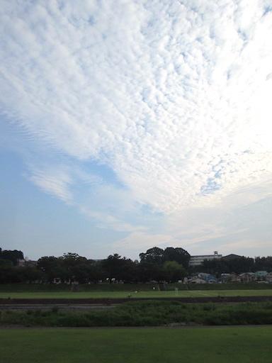 f:id:yonhonda:20200804075346j:plain