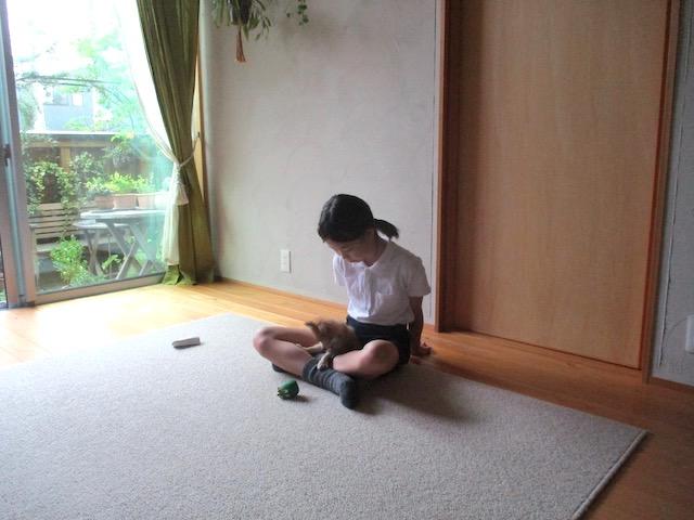 f:id:yonhonda:20210617091309j:plain