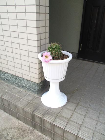 f:id:yonhonda:20210904095345j:plain