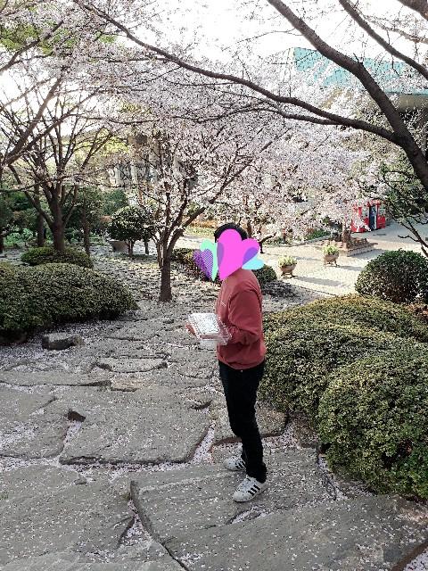 f:id:yono0610:20190413162005j:image
