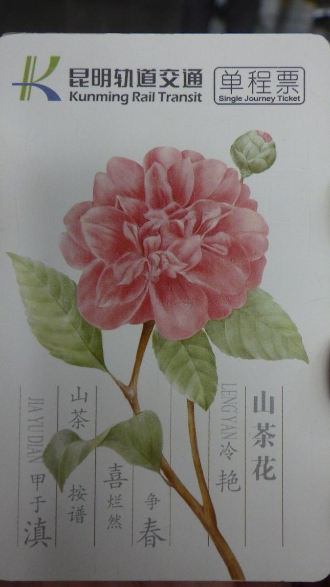 f:id:yonogishiki:20190518193028j:plain