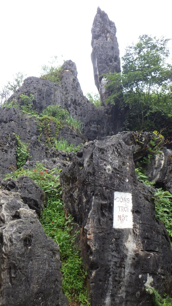 f:id:yonogishiki:20200405222430j:plain