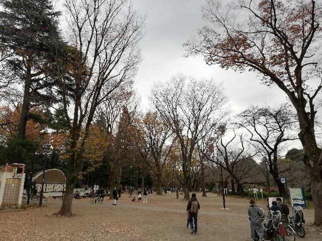 f:id:yonogishiki:20201207153339j:image