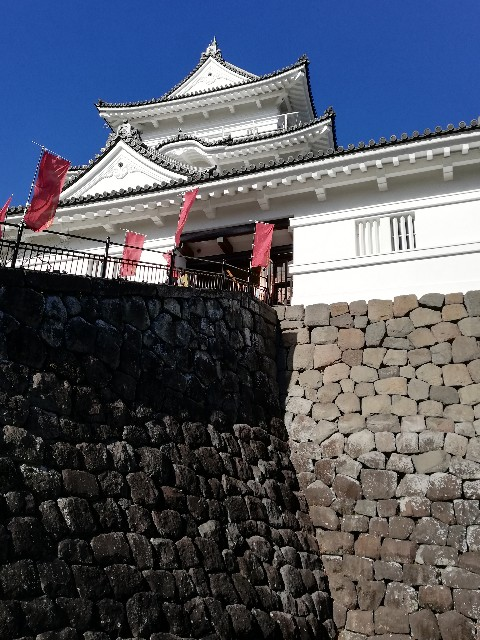f:id:yonogishiki:20210107133433j:image