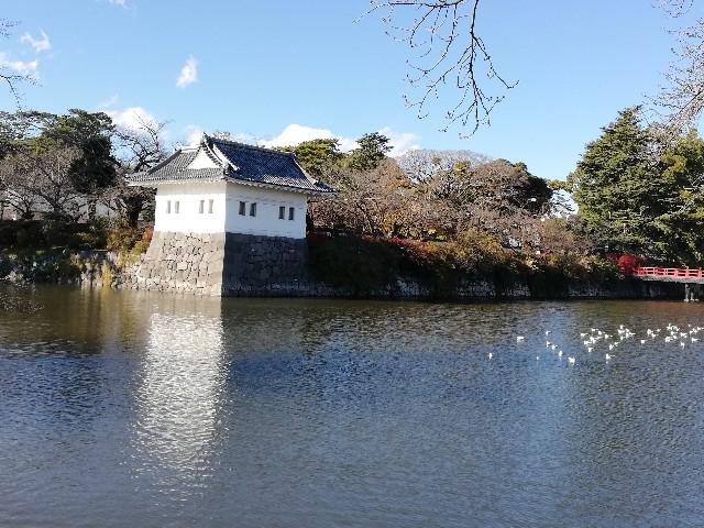 f:id:yonogishiki:20210107133602j:image