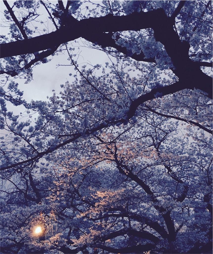 f:id:yoomayu:20160506145203j:image