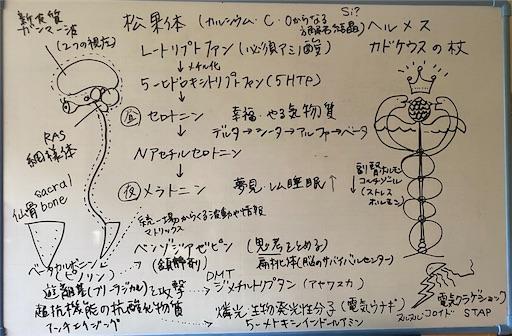 f:id:yoomayu:20210713101830j:image