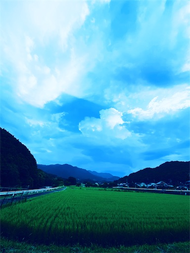 f:id:yoomayu:20210731235829j:image