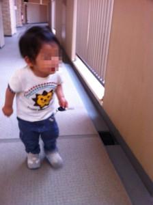 f:id:yoooshii:20120623003445j:image:w360