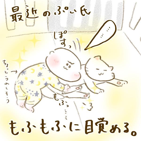 f:id:yoosanxwatashi:20181205212238j:plain