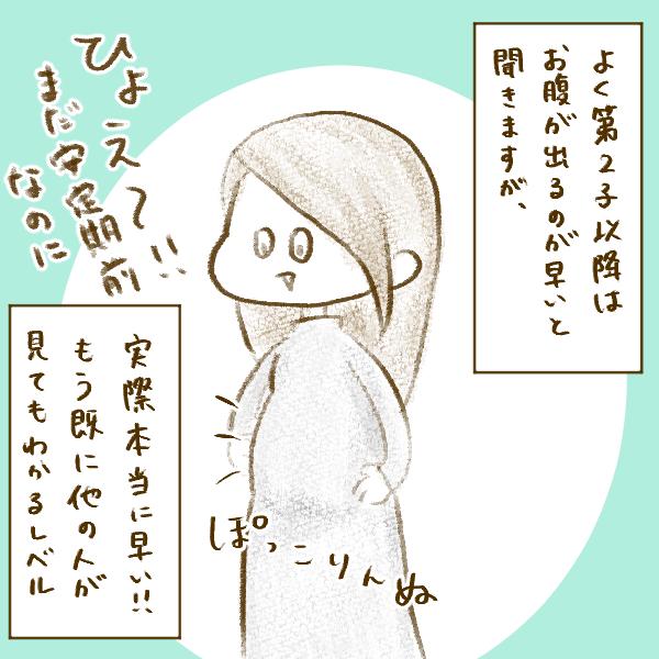 f:id:yoosanxwatashi:20190305000810p:plain
