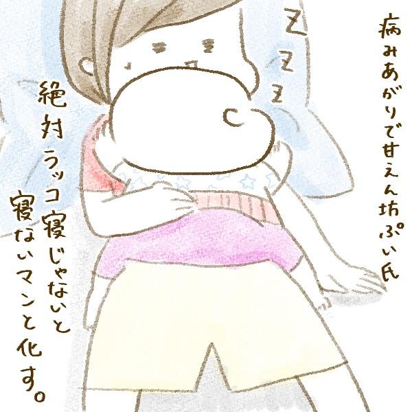 f:id:yoosanxwatashi:20190626092623j:plain