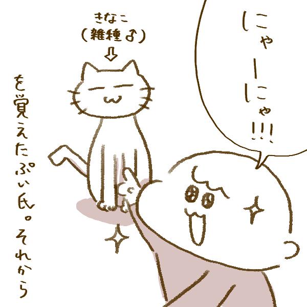f:id:yoosanxwatashi:20200228102155p:plain