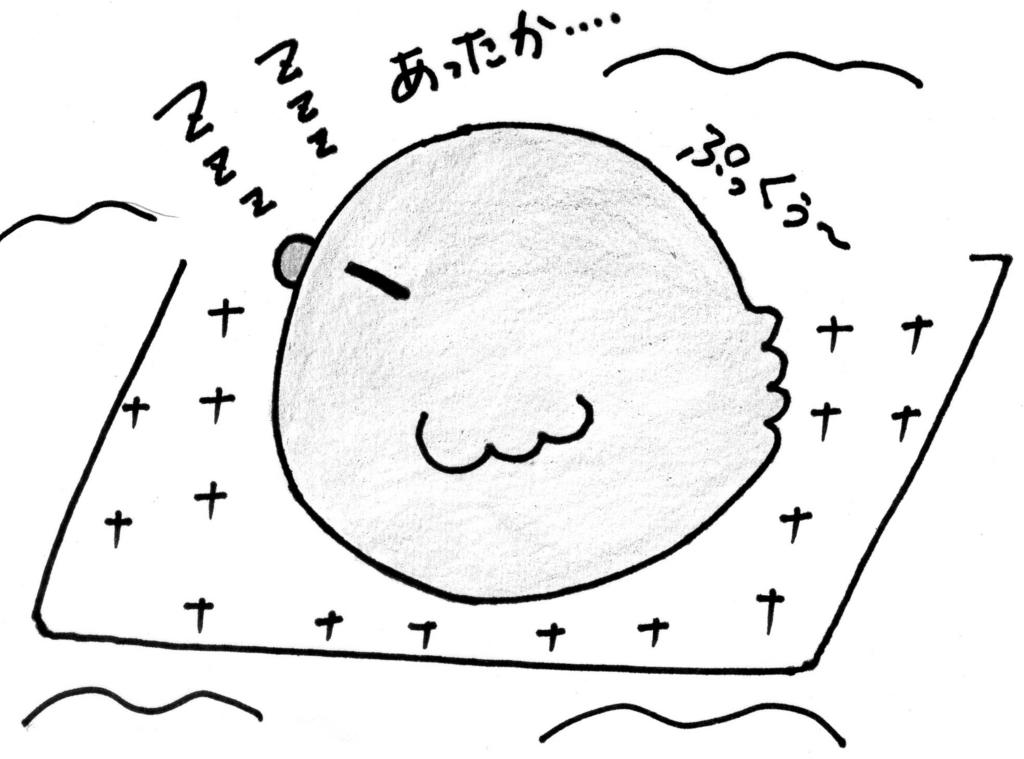 f:id:yorihito:20170201195133j:plain
