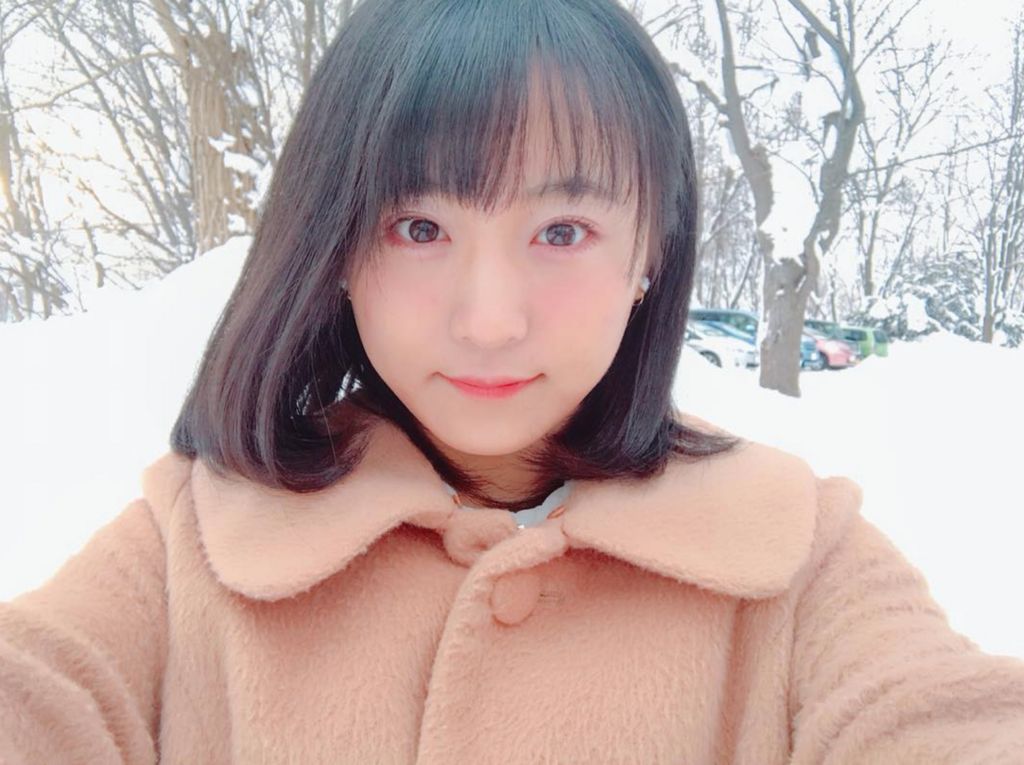 f:id:yorimichi_ticket:20180201205557p:plain