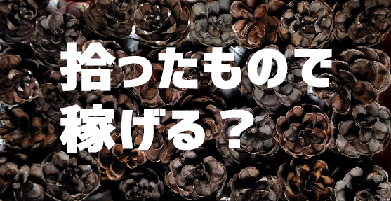 f:id:yorozumameharu:20171217202950j:plain