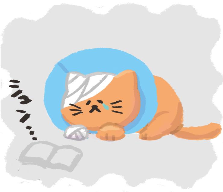 f:id:yorozumameharu:20181011225544j:plain