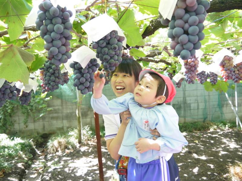 f:id:yosami-y:20170921102608j:image:w360
