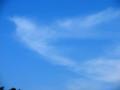 [空][雲]羽ばたく
