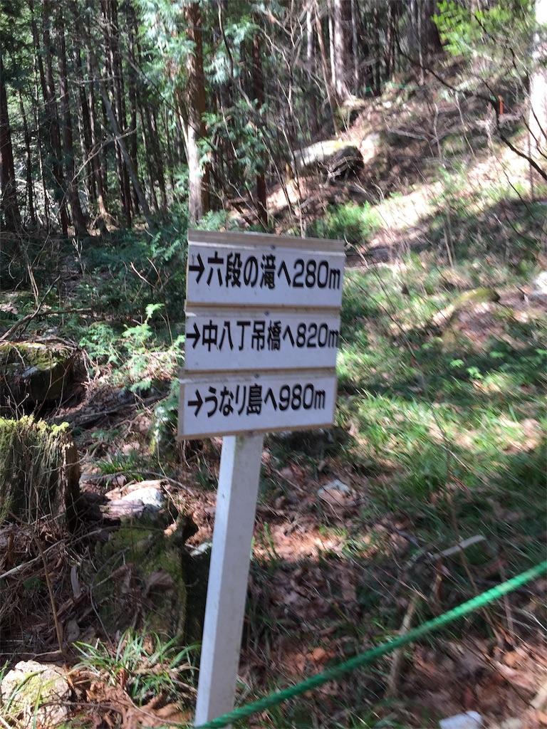 f:id:yoshi-1202:20210524100628j:image