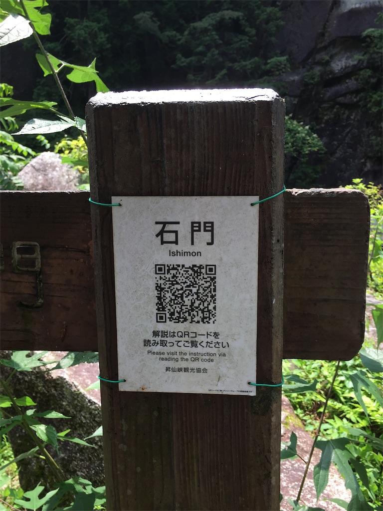 f:id:yoshi-1202:20211003130805j:image