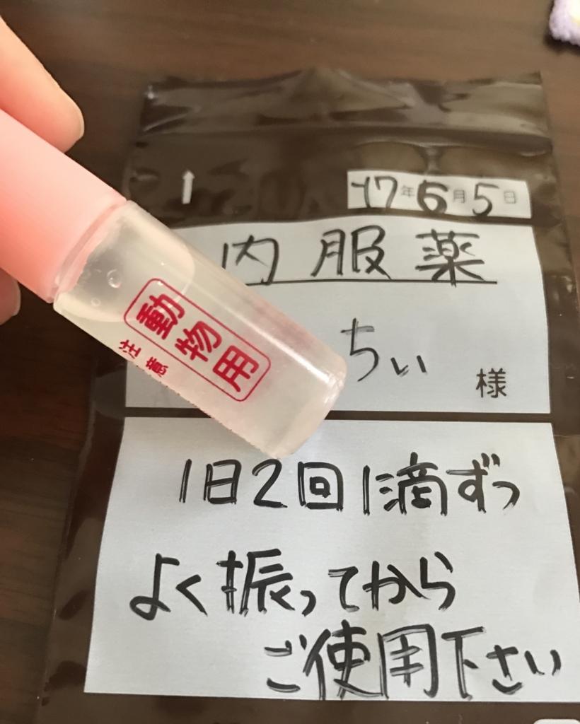 f:id:yoshi91:20170606141130j:plain
