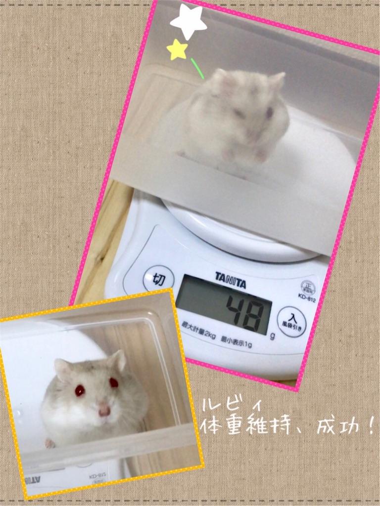 f:id:yoshi91:20170904031541j:image