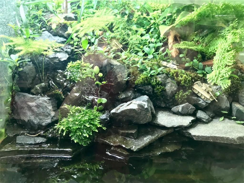 f:id:yoshi91:20190719031437j:image