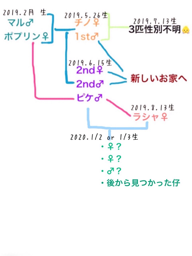 f:id:yoshi91:20200118150116j:image
