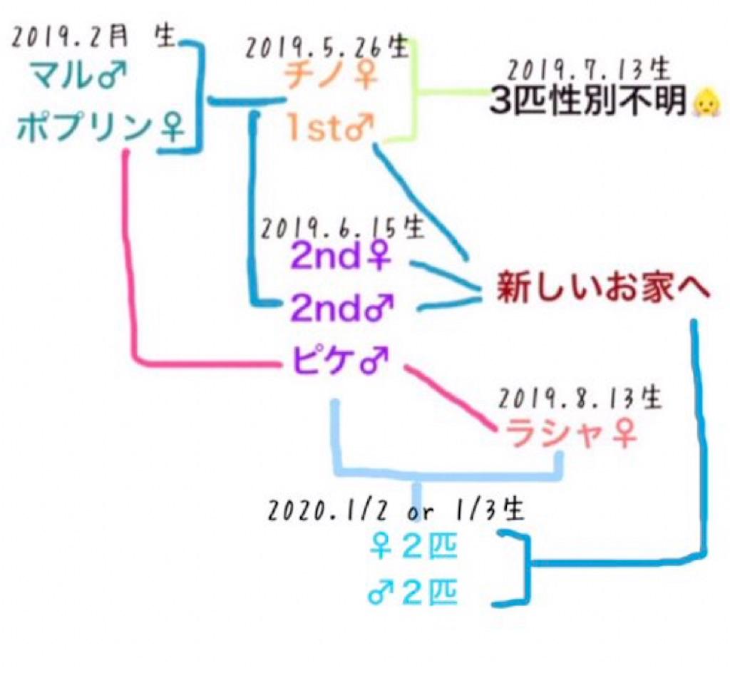 f:id:yoshi91:20210204160618j:image
