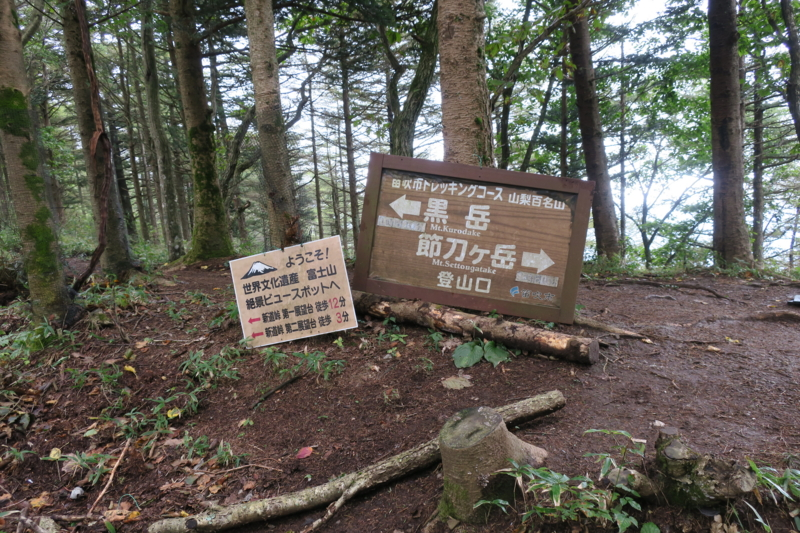 f:id:yoshi_10:20161010195147j:plain