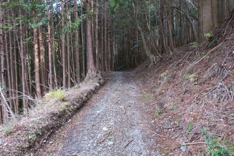f:id:yoshi_10:20170304215212j:plain