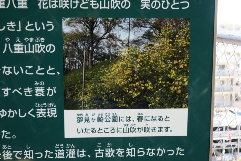 f:id:yoshi_10:20170423171352j:plain