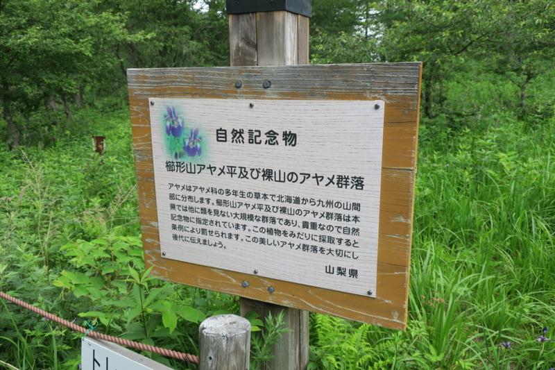 f:id:yoshi_10:20170723133704j:plain