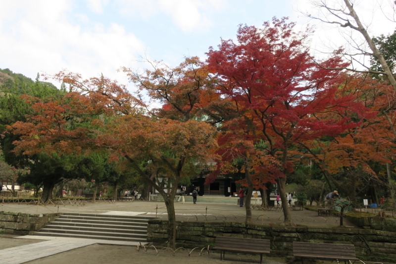 f:id:yoshi_10:20171202210118j:plain