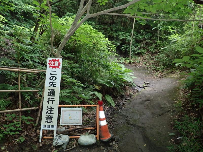 f:id:yoshi_10:20180623143307j:plain