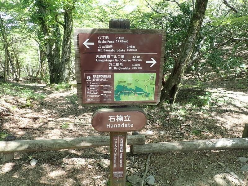 f:id:yoshi_10:20190526202614j:plain