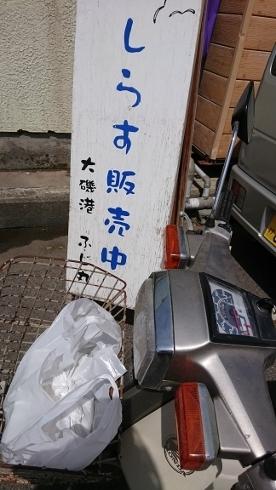 f:id:yoshi_skywalker:20190505095236j:plain